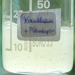 Gelbildner im Vergleich: Xanthan und Plantapon® SF