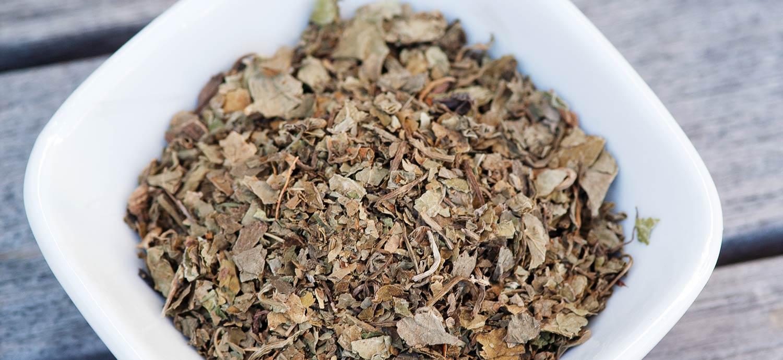 Getrocknetes Kraut: Centella asiatica