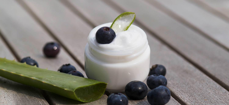 Creme mit Aloe Vera und Heidelbeeren
