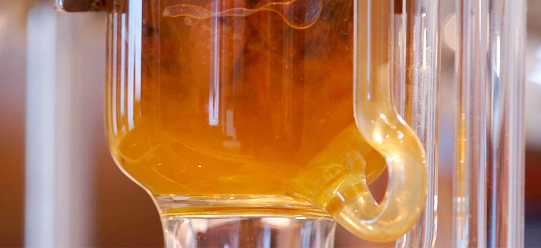 Soxhlet-Extraktion der Schalenwachse der Quitte