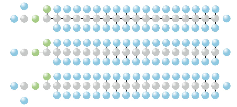 Grafische Darstellung eines Triglycerids