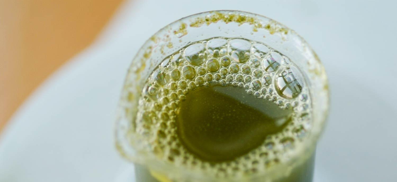 Turboextrakt von Olivenblättern, mit Schwebstoffen durchsetzt
