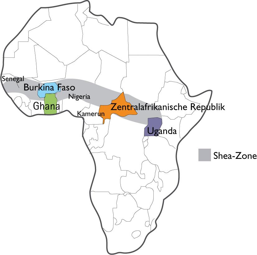 Der Shea-Gürtel in Afrika