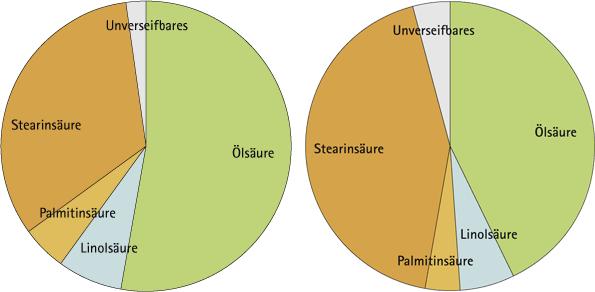 Vergleich der Fettsäurespektren von Sheabutter paradoxa und nilotica